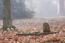 a tombstone and grace covered with autumn leaves